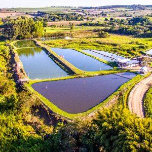 Pesqueiro Baixadão em Santa Maria da Serra | Portal Serra do Itaqueri