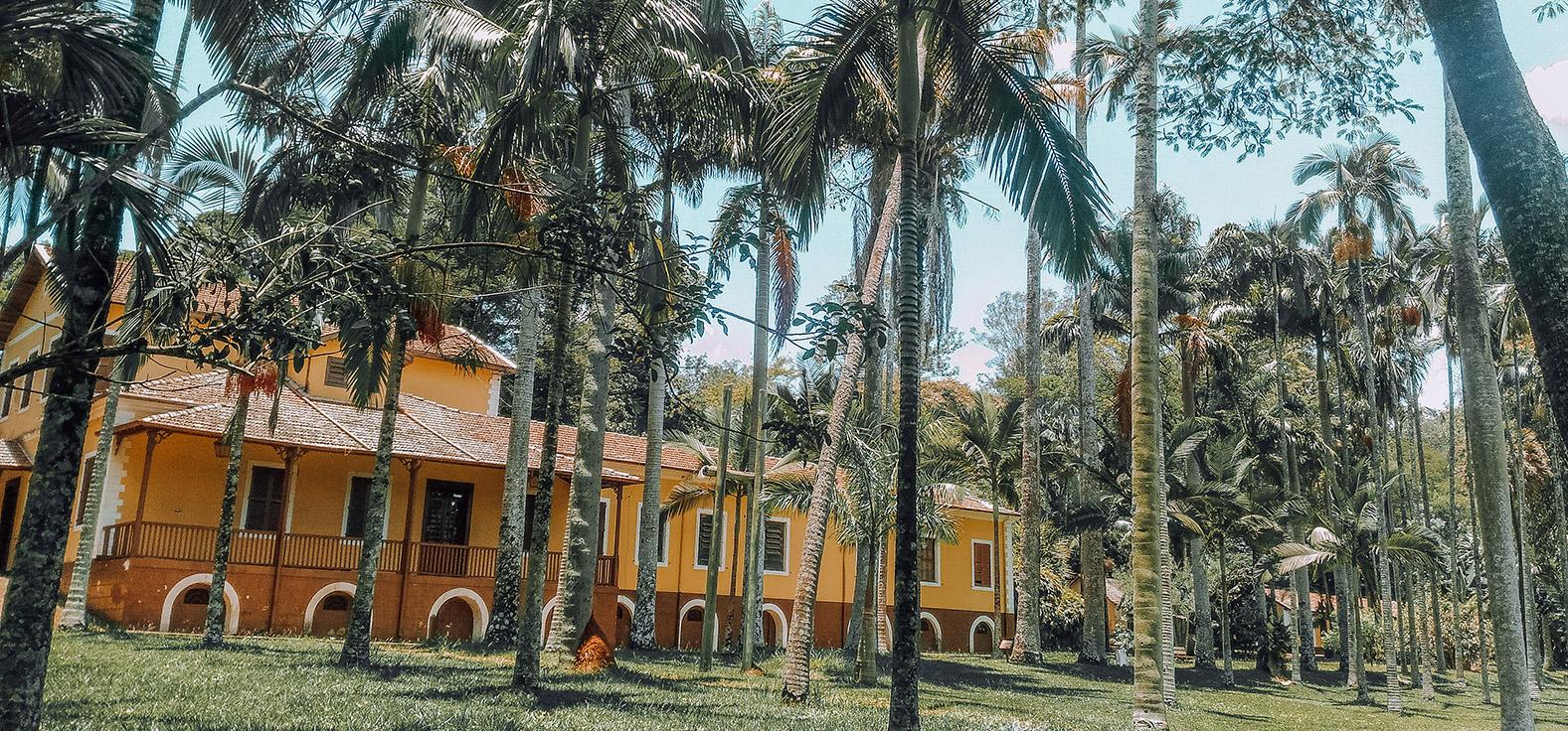 Parque dos Coqueiros em Rio Claro | Portal Serra do Itaquerí