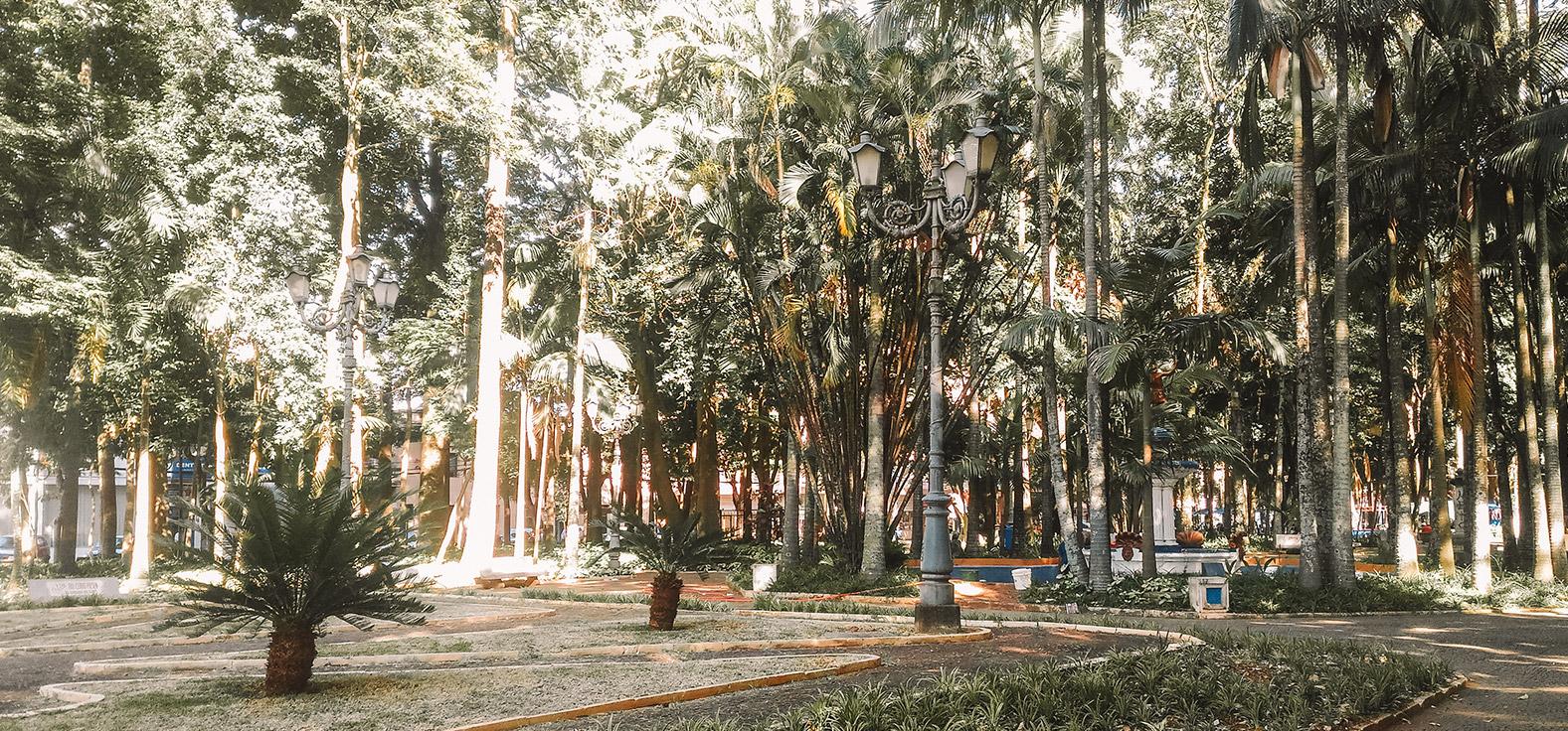 Jardim Público em Rio Claro | Portal Serra do Itaquerí