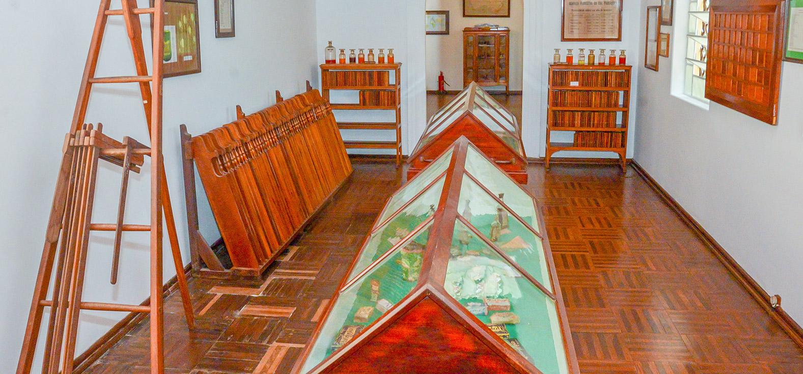 Museu do Eucalipto em Rio Claro | Portal Serra do Itaquerí